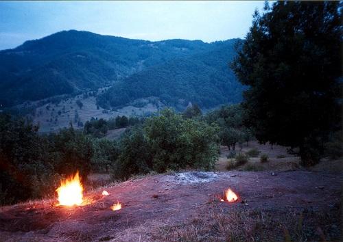 Focurile vii